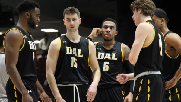 dalhousie tigers depth too much for ottawa gee gees down 2020 u sports final 8